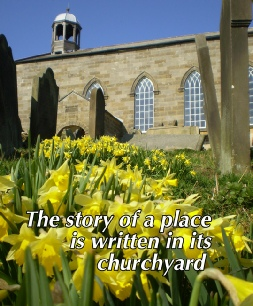 Spring Daffodils at Old St Stephens Church